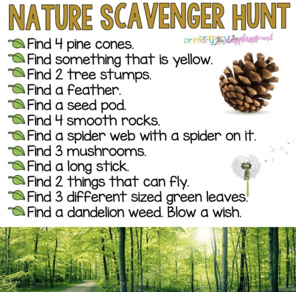 Done-Nature-Scavenger-Hunt